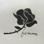 Roses d Acier